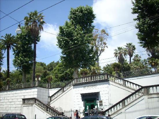dell'Orto Botanico di Napoli