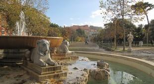 Espresso napoletano - Incanti dalla Real Villa: La flora del parco comunale di Chiaia, un tempo passeggiata borbonica di delizie