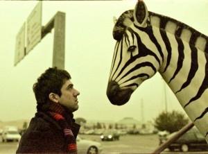 Fumaretto con zebra