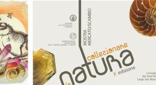 """Espresso napoletano - """"Collezionare la Natura"""": il 23 e 24 aprile ritorna la mostra mercato/scambio dedicata alle scienze naturali"""