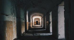 """Espresso napoletano - Raccontare i movimenti della fotografia in città tramite la rassegna fotografica """"Animus Neapolis"""""""