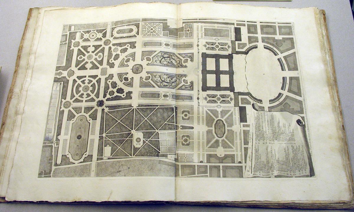 disegno dal libro