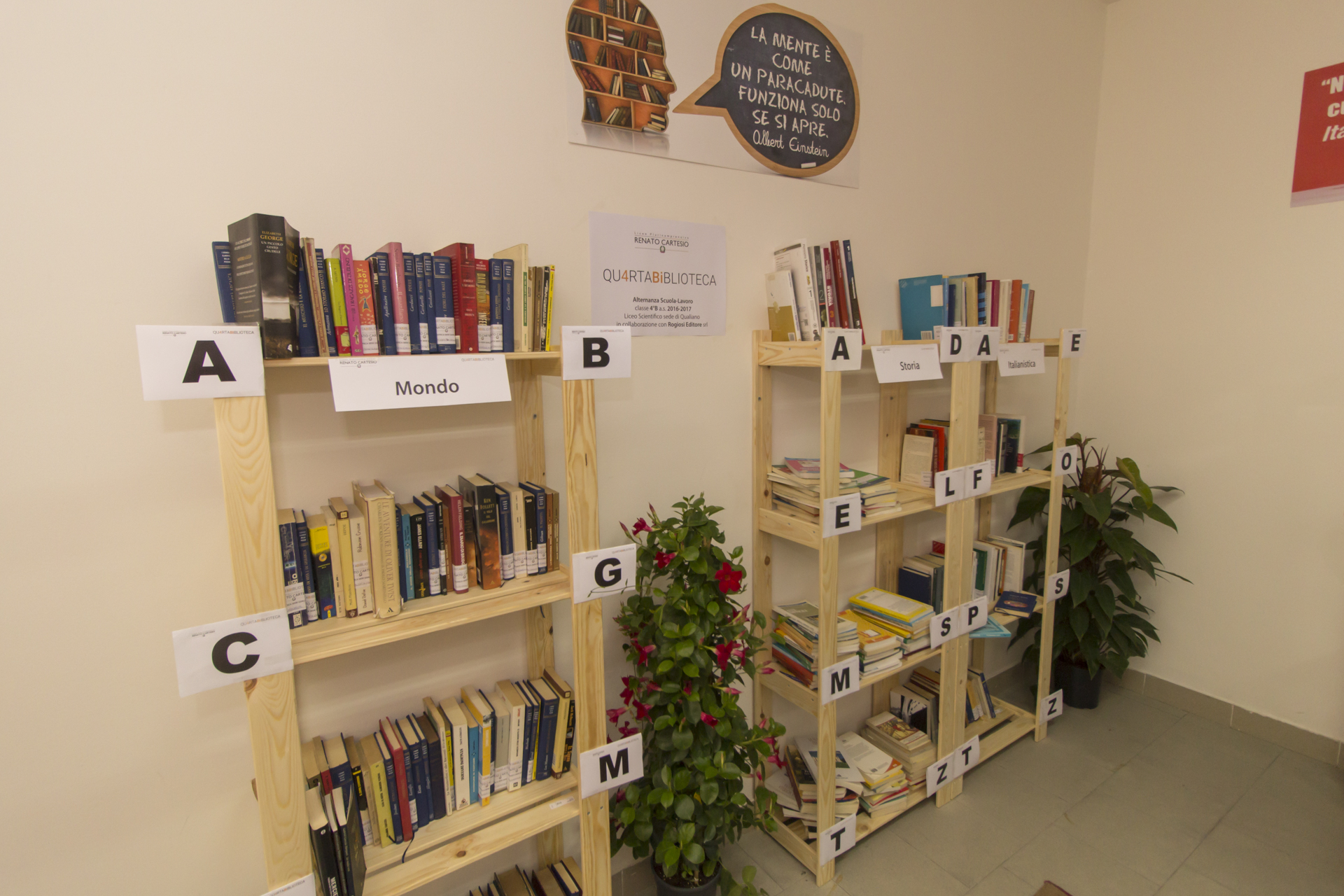 scaffali della biblioteca