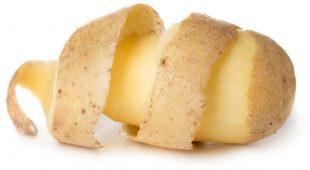 Espresso napoletano - Patata Felix: tante varietà di patate a Giugliano