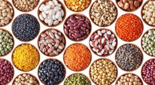 Espresso napoletano - Leguminosa, tre giorni dedicati ai legumi e alla biodiversità
