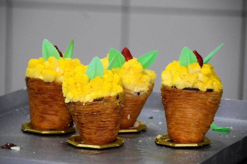 sfogliacampanella mimosa