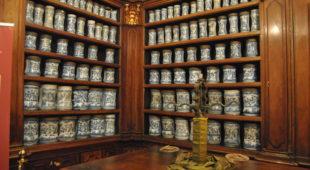 Espresso napoletano - Il Museo delle Arti sanitarie di Napoli agli Incurabili