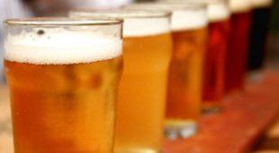 """Espresso napoletano - Al via """"Asini a tutta Birra"""": birra, palio e musica"""