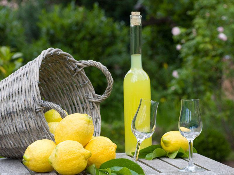 limoni in festa massa lubrense